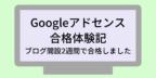 google-adsense-2
