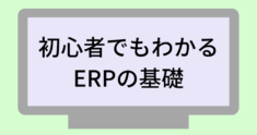 whats-is-erp